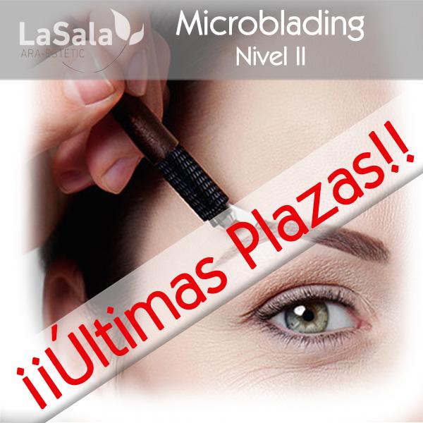 Curso microblading LaSala AraEstetic Zaragoza