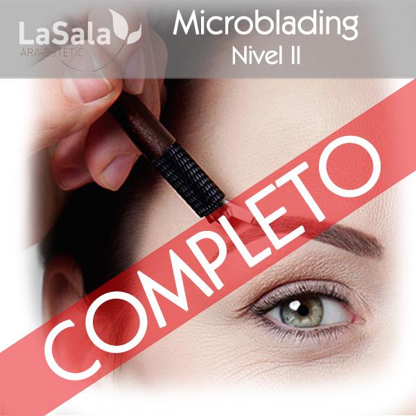 Curso microblading LaSala AraEstetic Zaragoza, Ara-Estetic